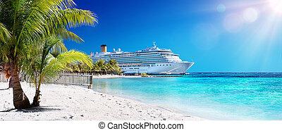 rejs, karaibski, dłoń drzewo