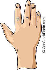 rejst, åbn, gestus, hånd