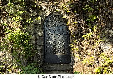rejtély, ajtó, alatt, a, erdő