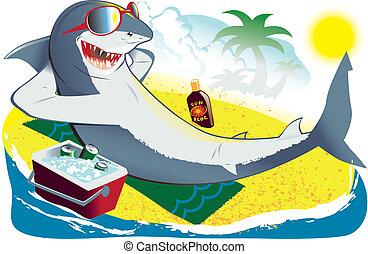 rekin, sunbathing