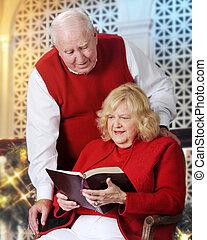 rekonesansowy, przedimek określony przed rzeczownikami, scriptures
