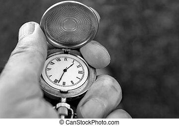 relógio bolso, mão