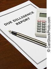 relatório, devido, dilligence