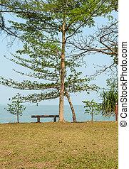 Relax at sea shore