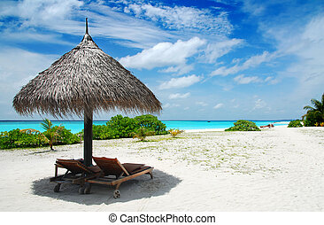 Relax in the Maldives - Beautiful white Maldivian beach with...