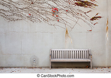 relaxamento, banco jardim