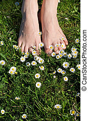 Relaxation - Woman feet on grass with flowers - relaxation