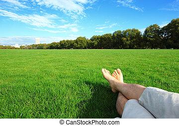 relaxe, descalço, apreciar, natureza