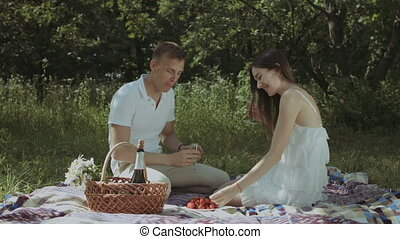 Relaxed couple drinking champagne on picnic