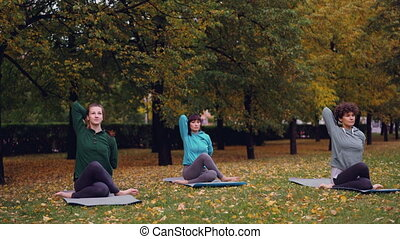 Relaxed females are sitting on yoga mats in Cow Face pose...