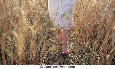 Relaxed woman legs walking in ripened wheat field