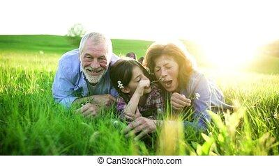 relaxen, natuur, lente, paar, kleindochter, buiten, grass., senior