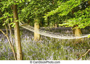 Relaxing hammock in bluebell woods