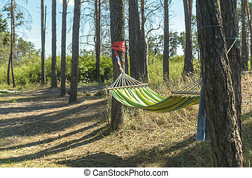 Relaxing lazy time with color hammock in the green forest.