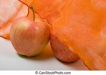 Orange Shy and Bold