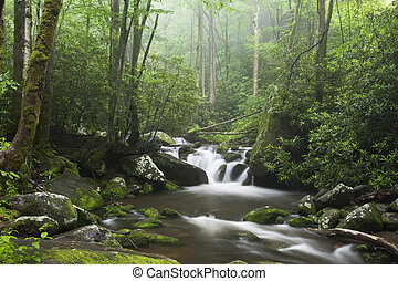 Smoky Mountains - Relaxing scenic along the Roaring Fork ...