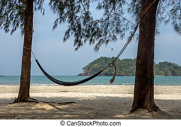 Relaxing under pine trees on the beach.