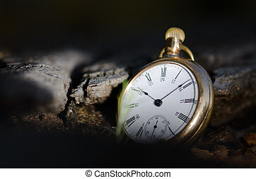 Relentless and Unstoppable Passage of Time