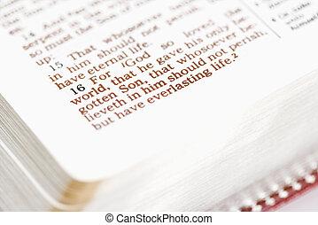 religiosas, bible.