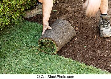 relvar, é, colocado, por, jardineiro