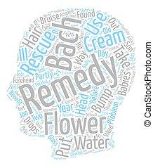 remédios, flor, salvamento, texto, bach, wordcloud, conceito, fundo