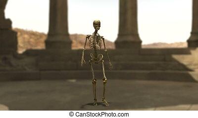 skeleton  - remains and skeleton