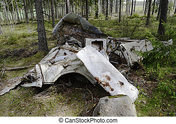 remains of the car in forest, horizontal