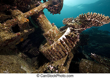 Remains of the Kormoran shipwreck and beautiful coral growth