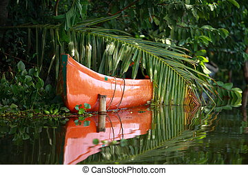 remanso, kerala, árbol, tropical, kochin, palma, bosque,...