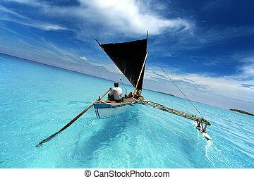 remar el barco, navegación, en, un, tropical, laguna