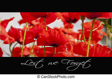 Remembrance day background with poppies and text: Lest we...