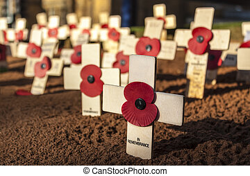 Remembrance Day Crosses - Small, wooden crosses with red...