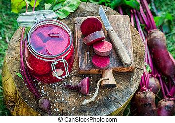 remolachas, encurtir, ingredientes