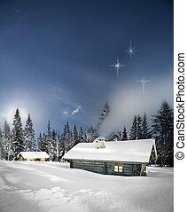 remoto, inverno, cabina, ceppo