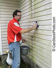 Removing Algae And Mold From Vinyl Siding