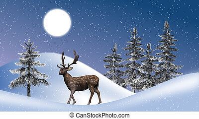 rena, winterly, paisagem