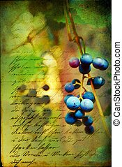 Renaissance Grapes - wild grape cluster with Renaissance...