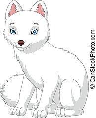 renard arctique, isolé, fond, blanc, dessin animé