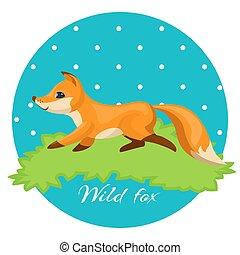 renard, coloré, chasseur, illustration, nuit, herbe sauvage