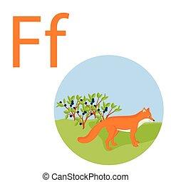 renard, f