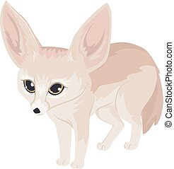 renard, fennec, illustration