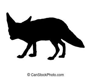 renard, silhouette, fennec