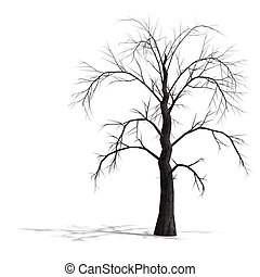 render, árbol, muerto, sin, leafs, 3d