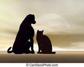 render, -, chien, chat, amitié, 3d