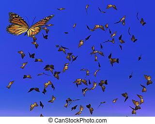 render, -, farfalle, migrazione, monarca, 3d