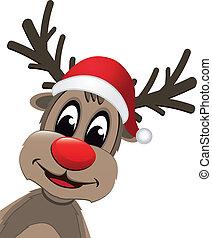 rendier, kerstmis, rode neus