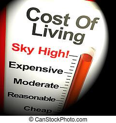 rendre, cout, vivant, ciel, dépenses, élevé, moniteur, 3d