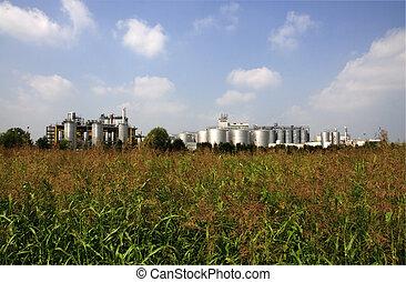 Renewable Energy: biodiesel production - Italy: biodiesel...