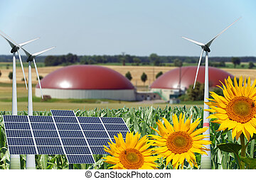 renewable energy - Biogas facility with sunflowers and wind ...