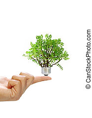 Renewable energy concept - Finger holding a tree plant ...